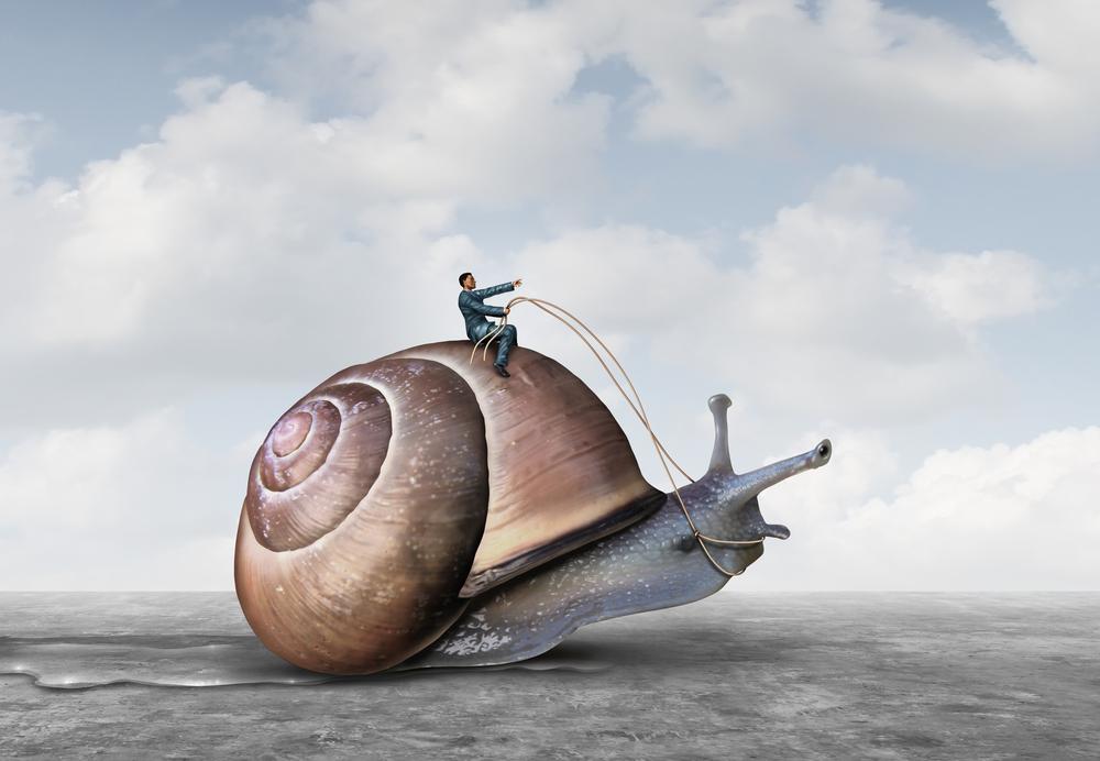 guy riding a giant snail