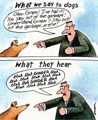 what we say to dogs cartoon gary larson